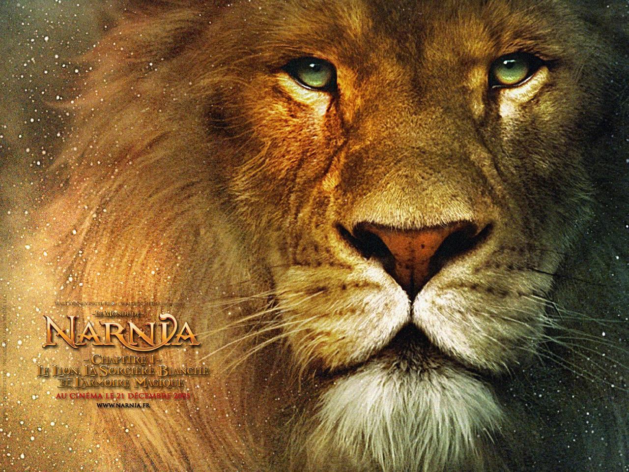 Wallpaper Le Monde de Narnia Lion Aslan