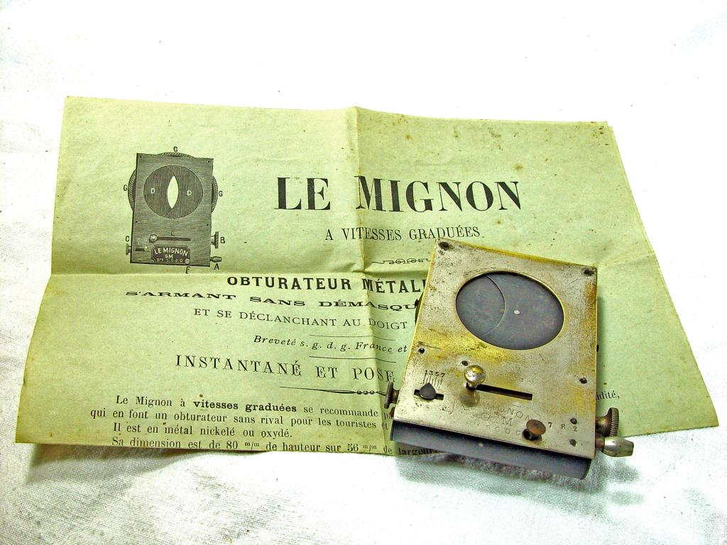 Wallpaper 3290-6  LE MIGNON obturateur mono, collection AMI The Wild