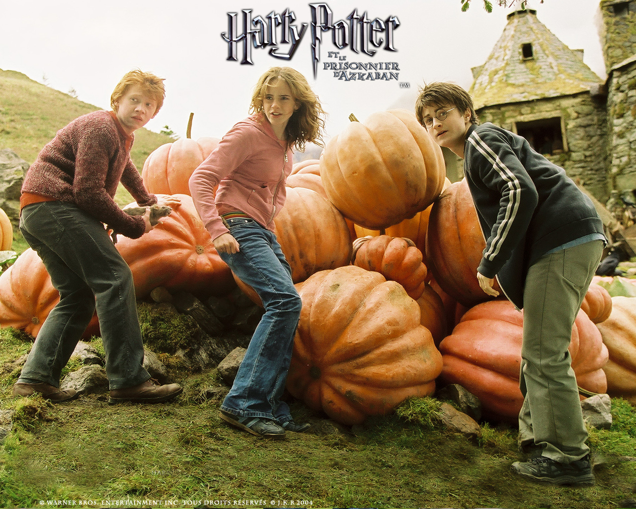 Wallpaper Harry Potter Prisonnier Azkaban