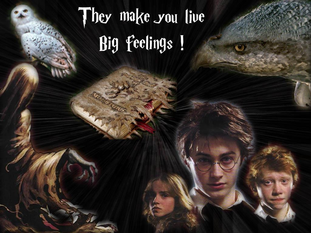Wallpaper harry ron miss grandger Harry Potter
