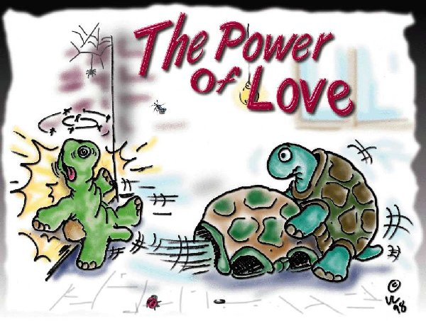 Wallpaper the power of love Humour & Insolite