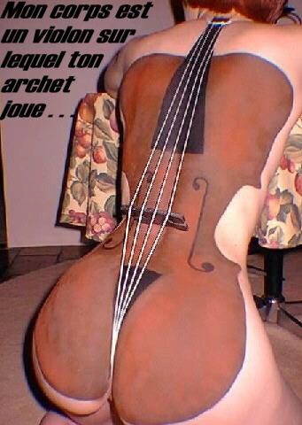 Wallpaper violon Humour & Insolite