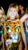 Wallpaper Humour & Insolite jolie tigre