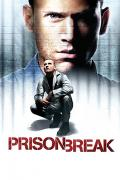 Wallpaper Prison Break Michael Scofield Wentworth Miller
