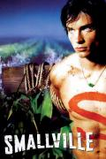 Wallpaper iPhone Smallville Tom Welling