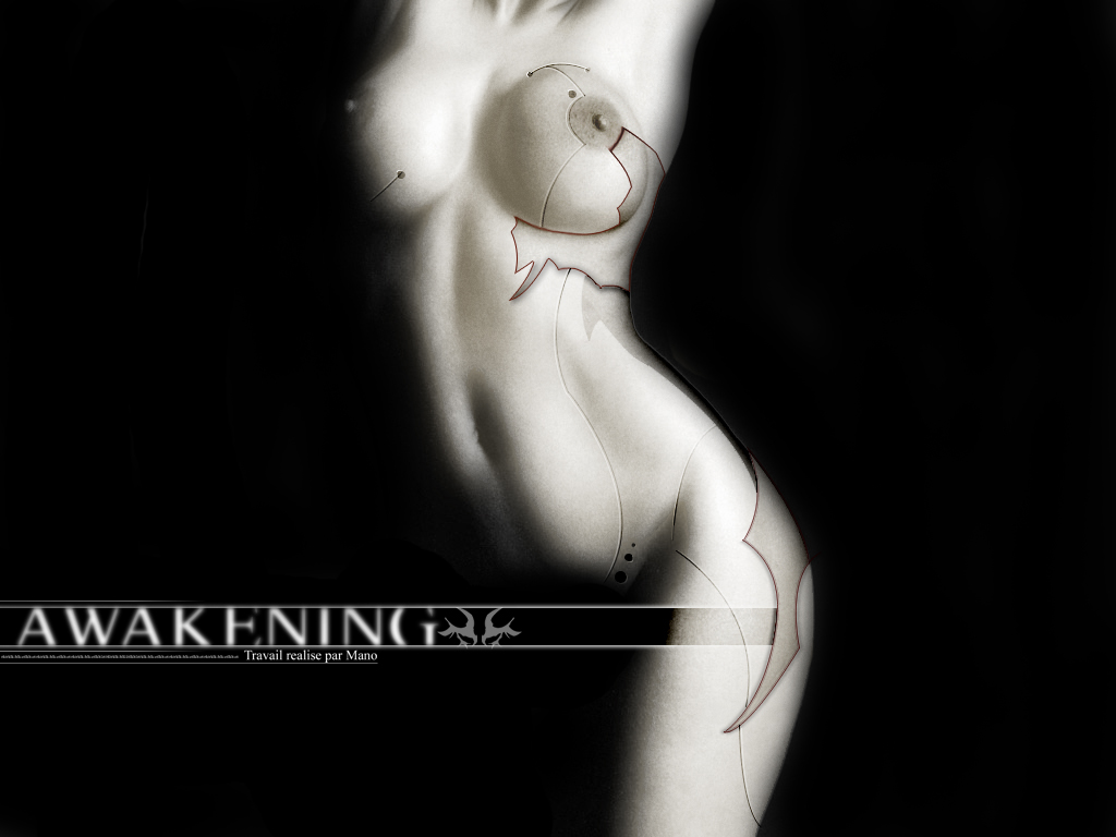 Wallpaper awakening Design Web