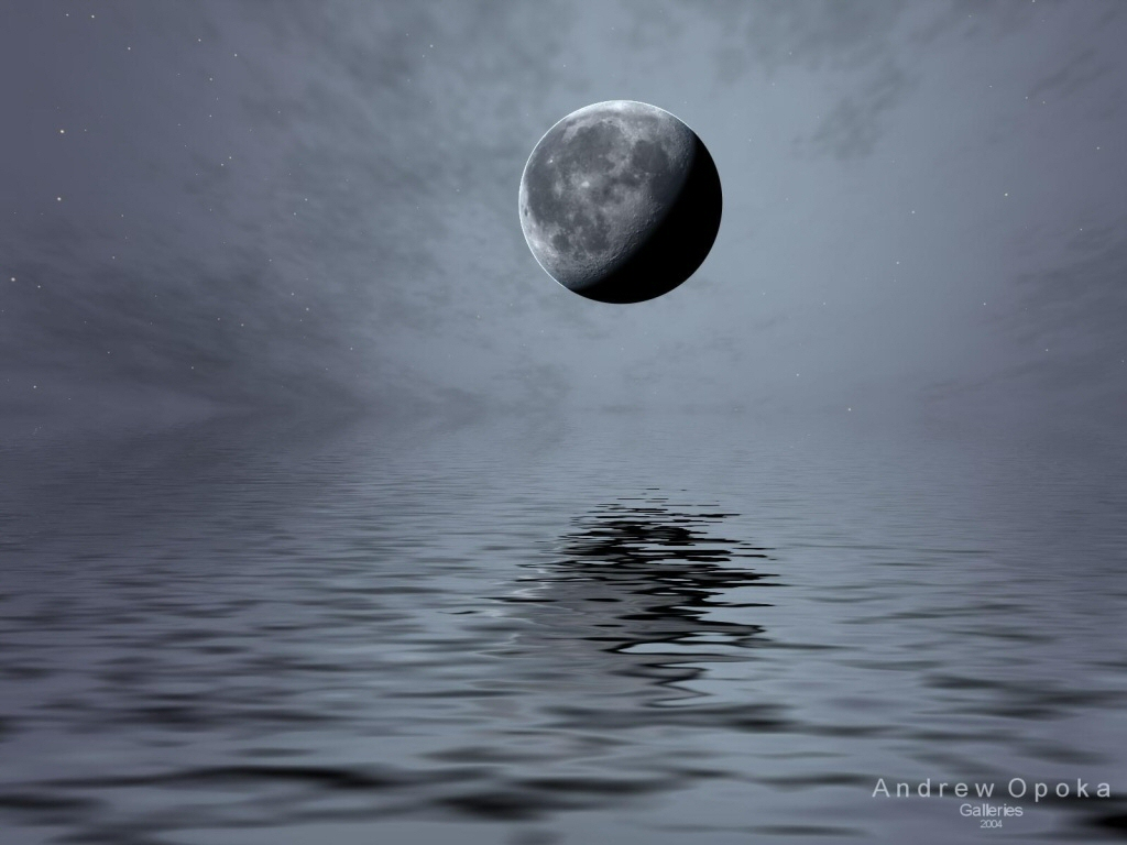 Wallpaper Design Web lune