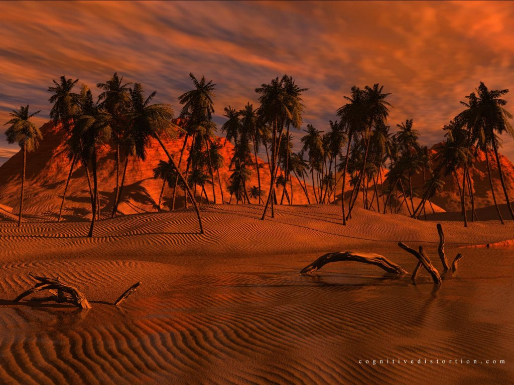 Wallpaper Design Web palmiers
