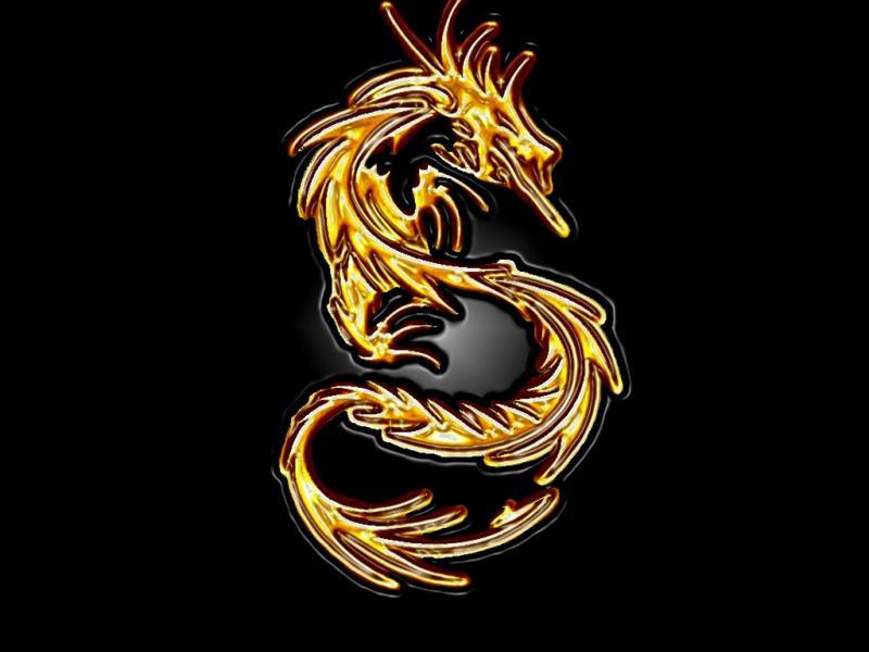 Wallpaper dragon Design Web