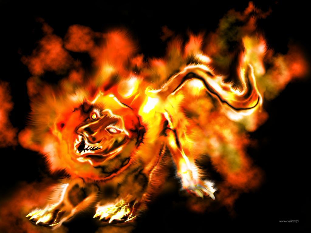 Wallpaper tigre Design Web