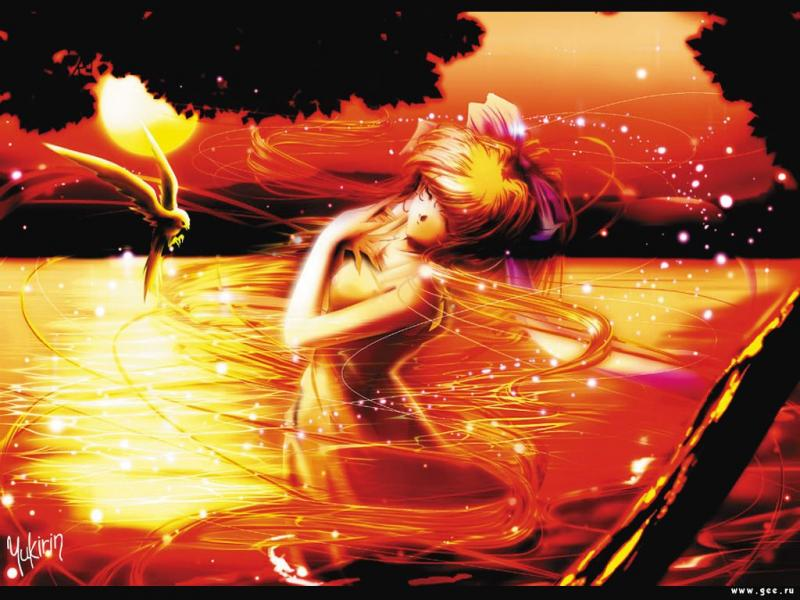 Wallpaper coucher de soleil Manga