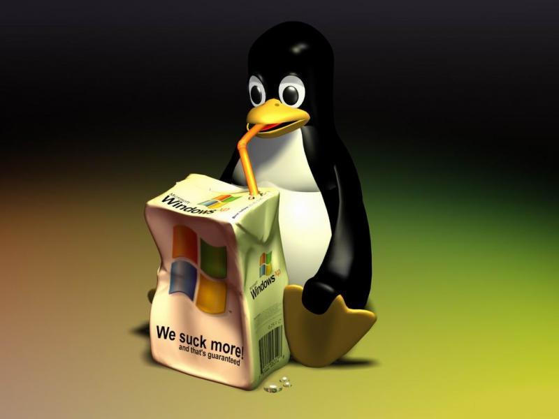 Wallpaper Theme Windows XP pingouin
