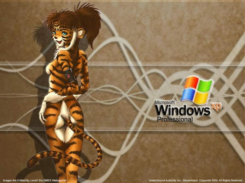 Wallpaper Theme Windows XP tigresse