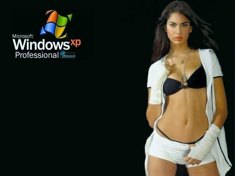 Wallpaper Theme Windows XP WIN XP Hot
