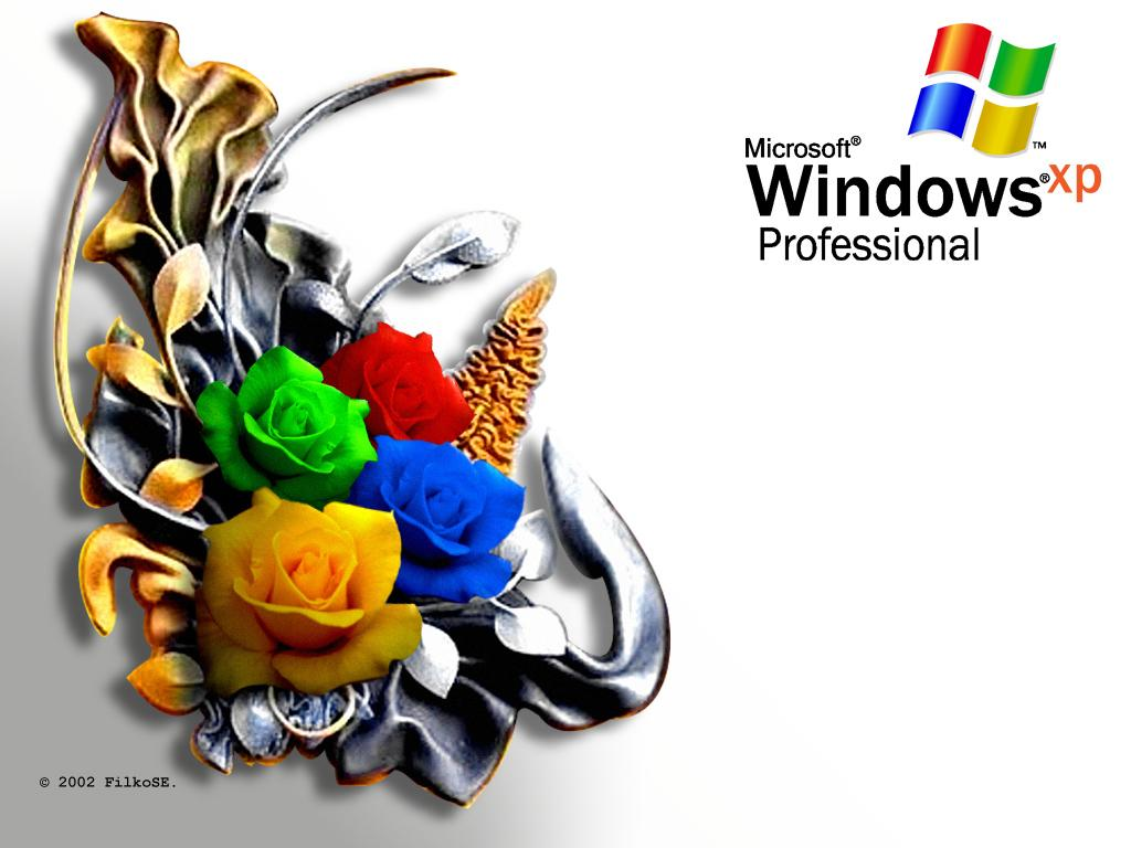 Wallpaper Theme Windows XP WIN XP Roses