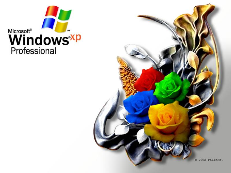 Wallpaper WIN XP Roses Theme Windows XP