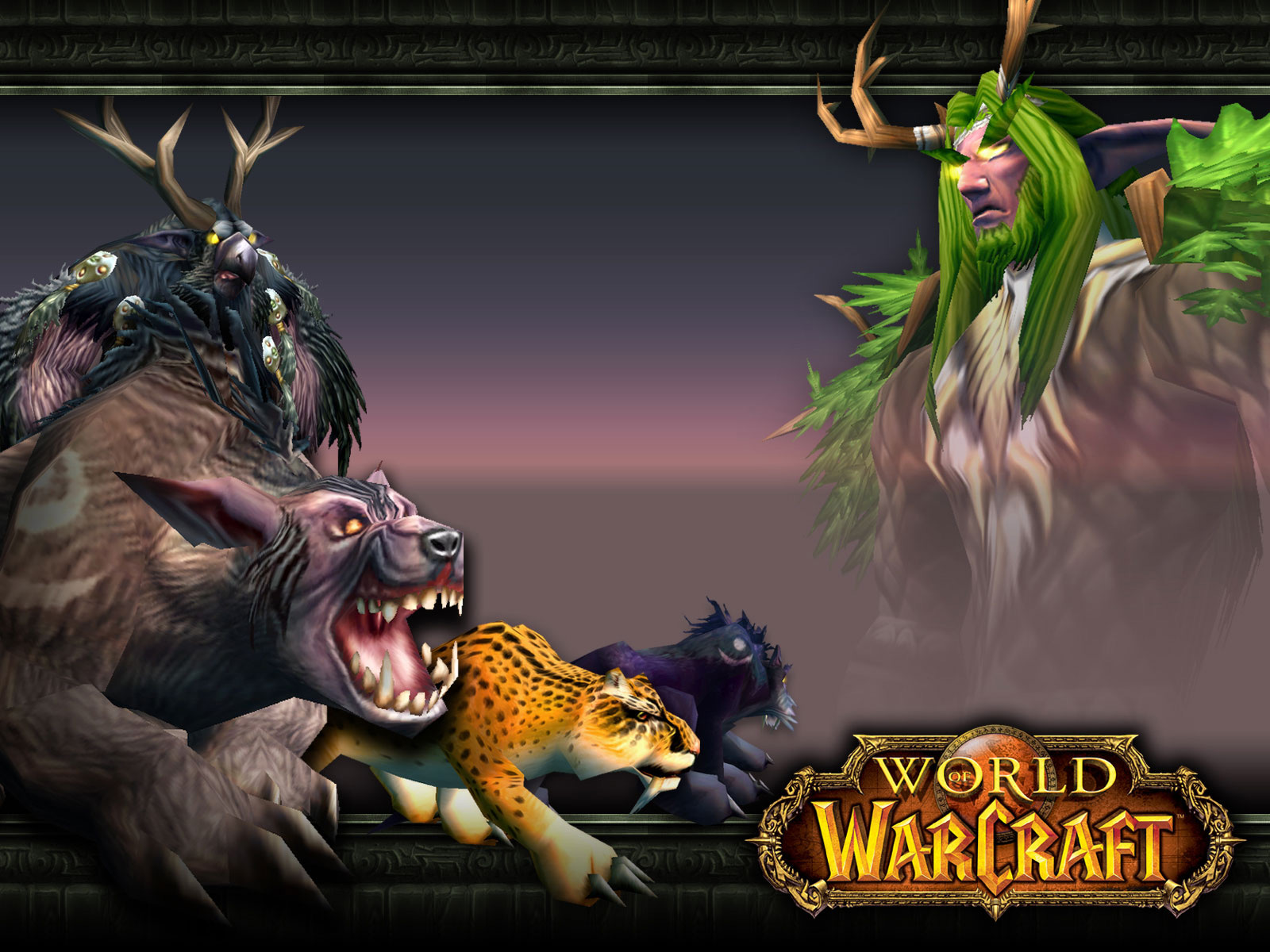 Wallpaper druid forms Word of Warcraft WoW