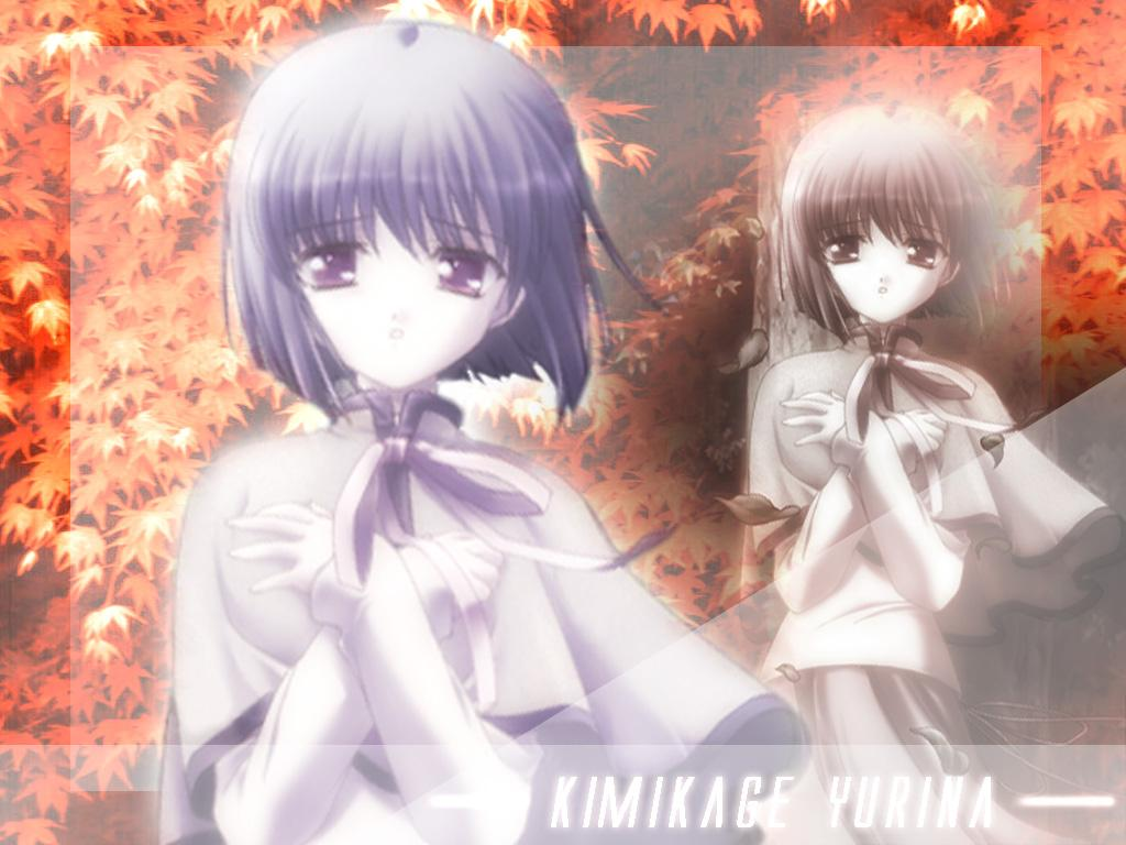 Wallpaper Canvas kimikage yurina