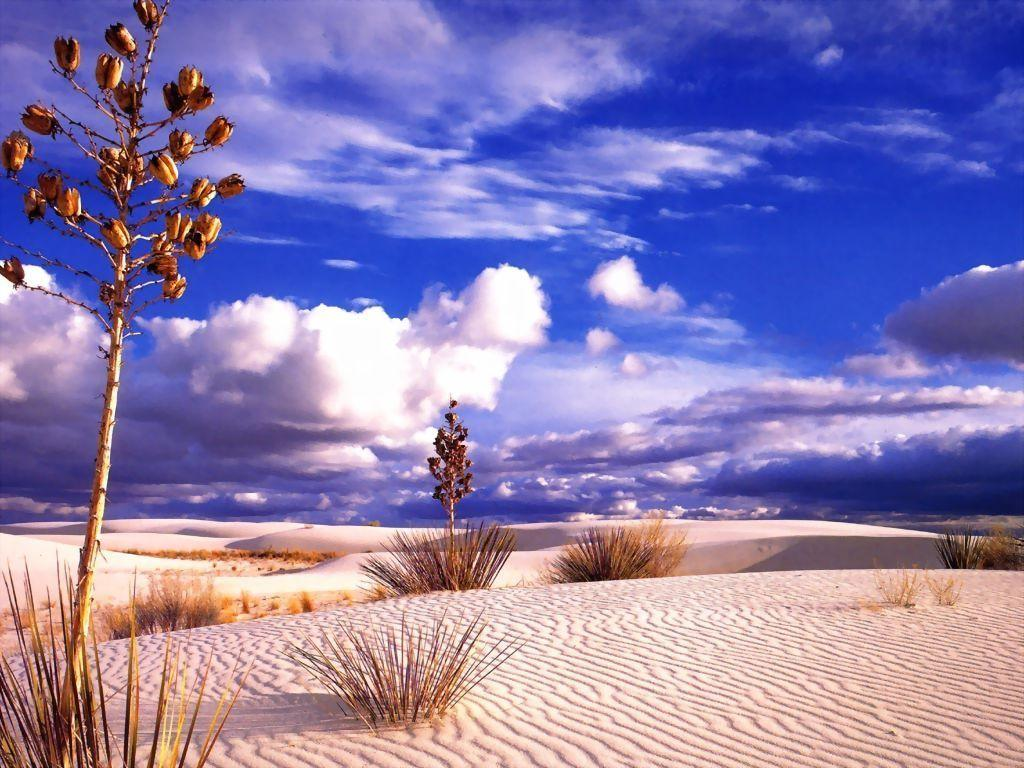 Wallpaper Paysages desert