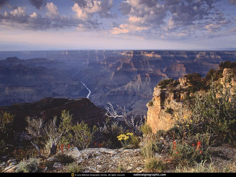 Wallpaper grand canyon Paysages