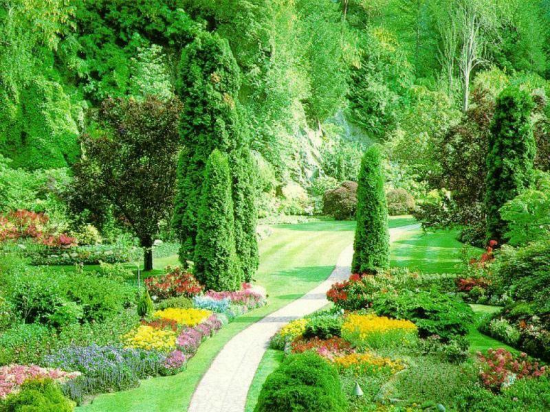 Wallpaper jardin Paysages