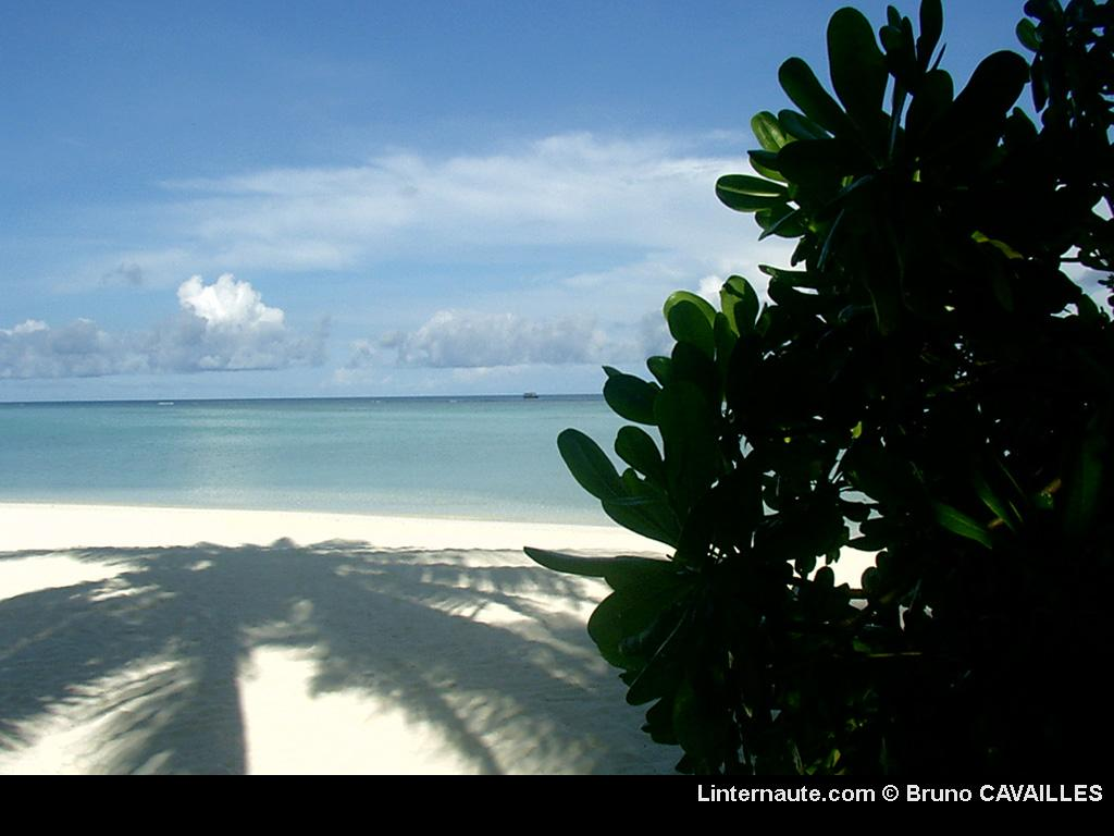 Wallpaper laguna beach resort maldives Paysages