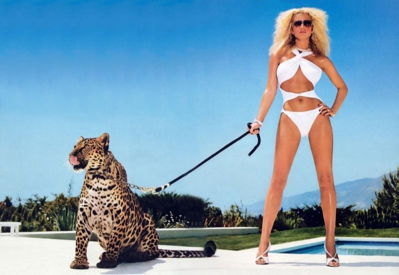Wallpaper Jessica Simpson jolie tigre