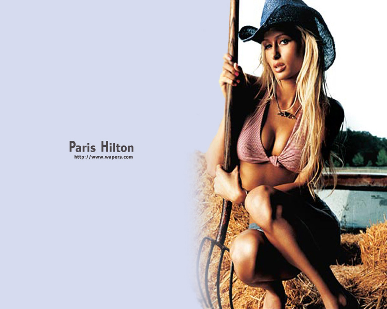 Wallpaper Paris Hilton farm