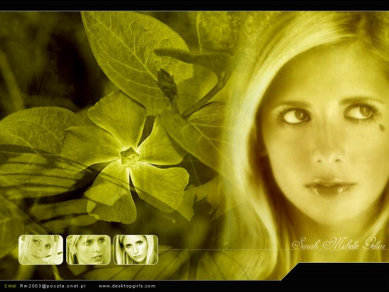 Wallpaper Portrait Sarah Michelle Gellar